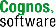 CognosSoftware